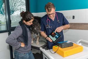 Consultation cardiologie grâce au vet'consult