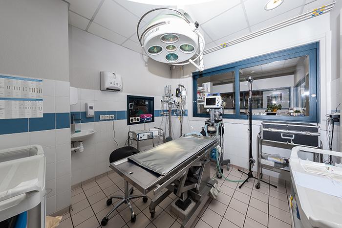 Clinique vétérinaire - CityVéto La-salle-de-chirurgie